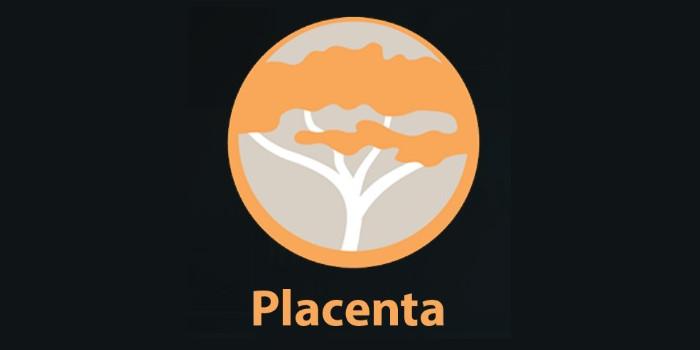 Placenta Kodi Addon installieren