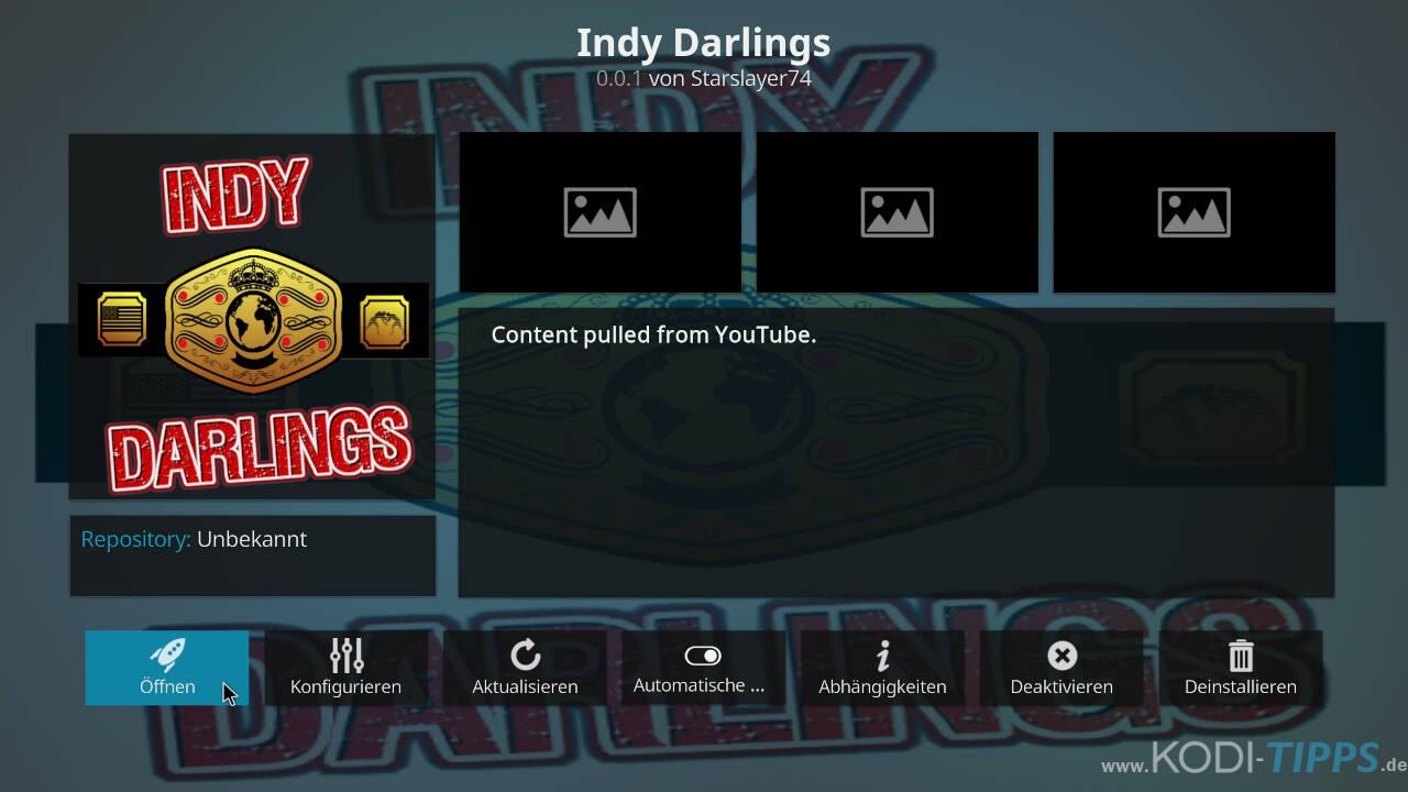 Indy Darlings Kodi Addon installieren - Schritt 6
